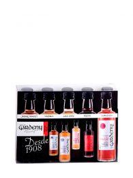 Pack 5 Vinagres Tintos - Botellines de 40ml - Castell de Gardeny