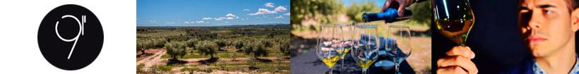 Nou segons aceite de oliva virgen extra Premium en Sabority.com