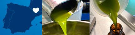 Oli del Raig, aceite sin filtrar ERM