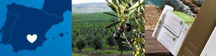 Cósmetica con Aceite de oliva ecológico