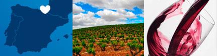 Lan Bodegas Rioja, origen y sugerencia presentación