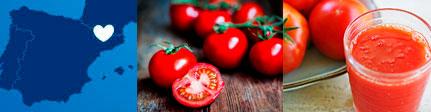 zumo de tomate cal valls, origen y presentación
