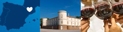 Vinos Castell del Remei, origen presentación