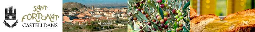 Cooperativa Sant Fortunat de Castelldans