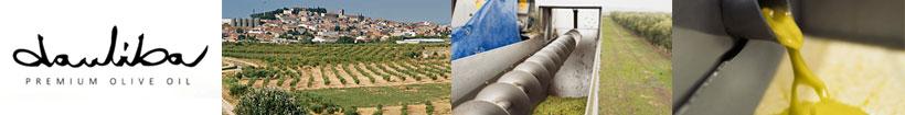 Dauliba aceite de oliva sin hueso en Sabority