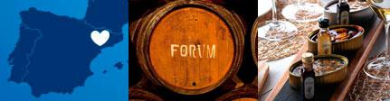Forum Vinagres Premium, origen y presentación