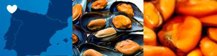 Mejillones premium Espinaler · Sugerencia de presentación y origen
