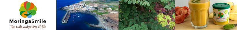 Moringa ecológica premium MoringaSmile en Sabority