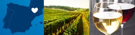 origen sugerencia de presentación MotArt vinos moteros