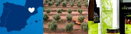 Olicatessen aceite ecólogico virgen extra origen y presentación