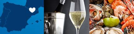 Origen sugerencia de presentación de vinagre de vino de cava de Castell de Gardeny
