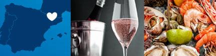 Origen sugerencia de presentación de vinagre de vino de cava rosé de Castell de Gardeny
