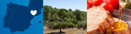 Origen y sugerencia de presentación Aceite de oliva virgen extra Mas del Clos
