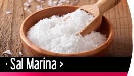 Sal Marina Gourmet