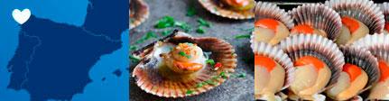 Zamburiñas Espinaler Gourmet origen y presentación